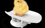 Ведение беременности и роды, как выбрать клинику и врача