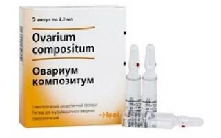 Овариум композитум: состав препарата и показания к применению, стоимость в аптеке