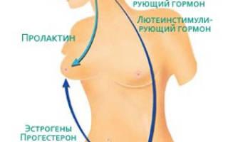 Что такое эндокринный фактор бесплодия и лечится ли патология?