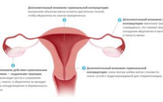 Как предохраняться при климаксе, средства контрацепции