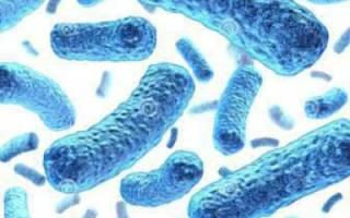 Левомицетин при цистите, инструкция по применению